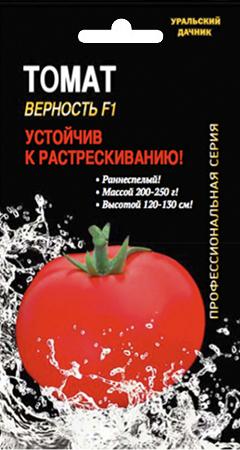 томаты Верность фото