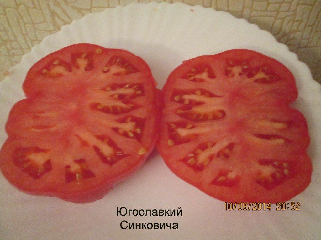 Югославский Синковича помидор в разрезе