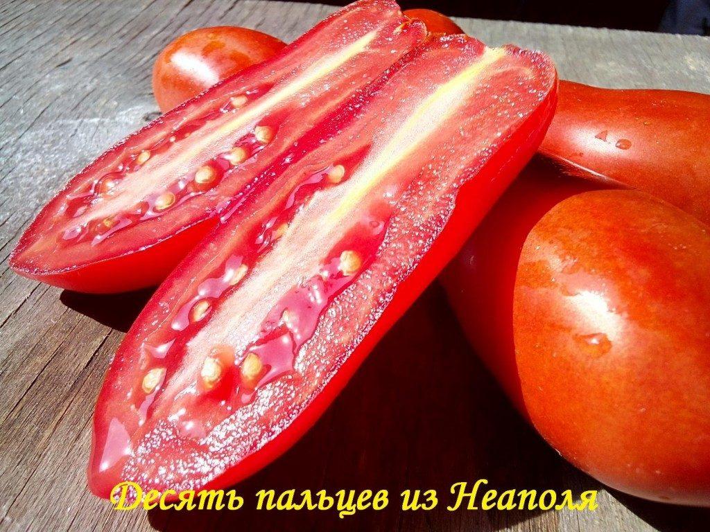 помидоры десять пальцев из неаполя фото отзывы