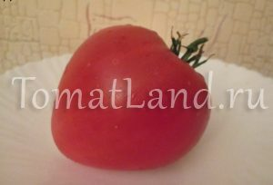 помидоры африканский викинг фото
