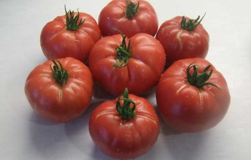 томаты немецкий бабушки Кантрелл фото