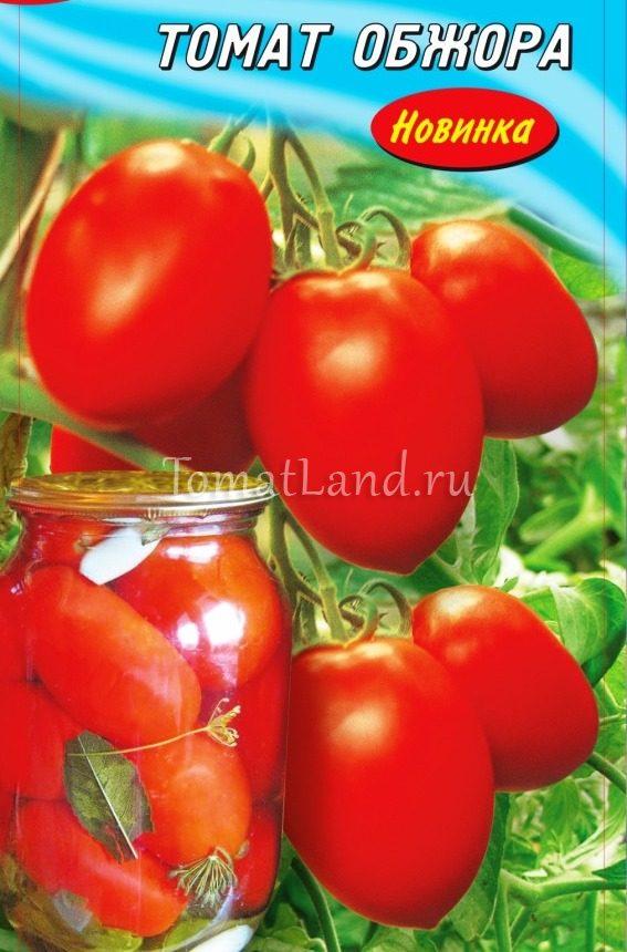 помидоры Обжора фото