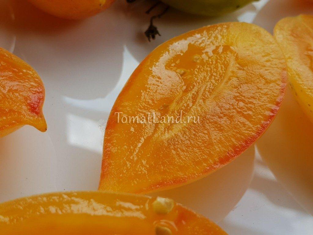 томаты сладкий коем фото отзывы описание