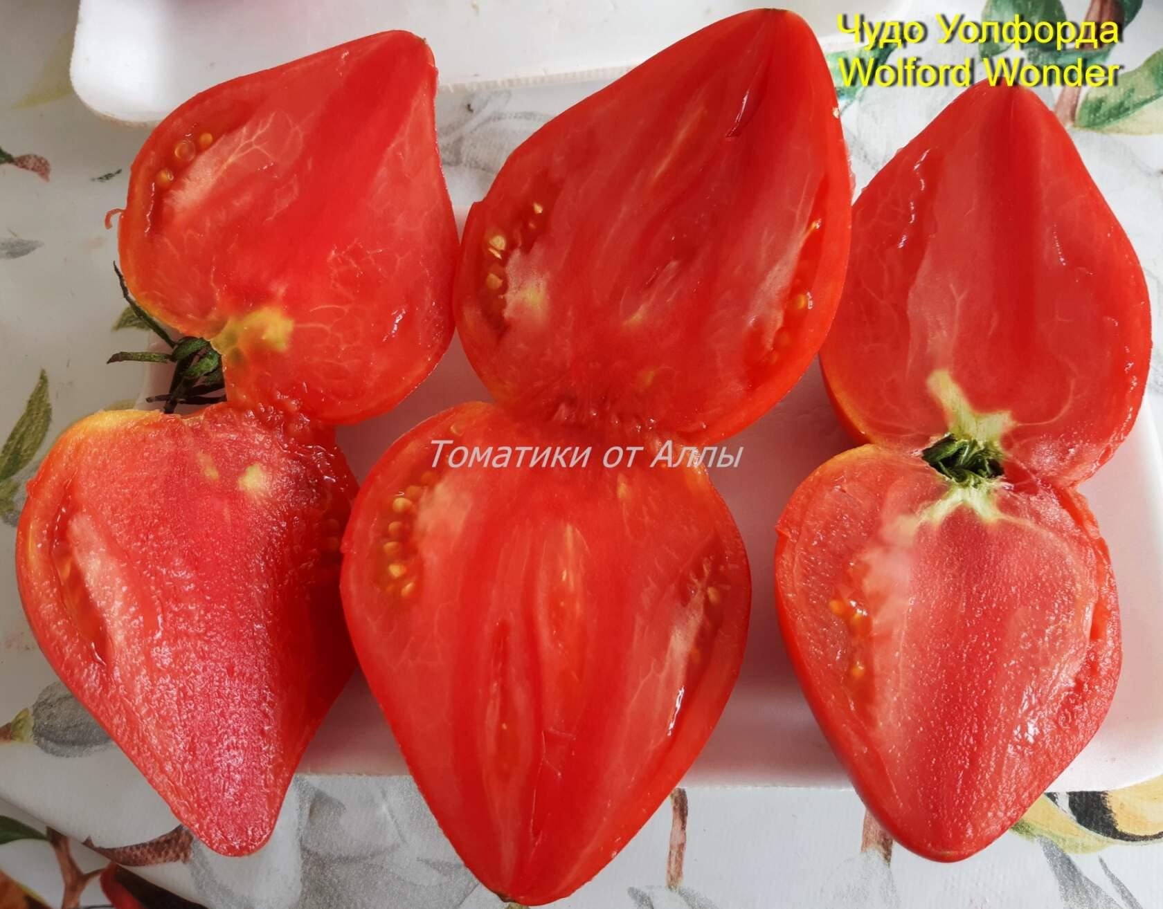 помидоры чудо уолфорда фото отзывы